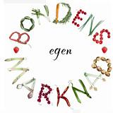 BEM - Logo